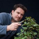 Guido Braun beim Zurechtschneiden eines Bonsai