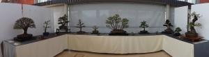 unser fertiger Ausstellungsbereich